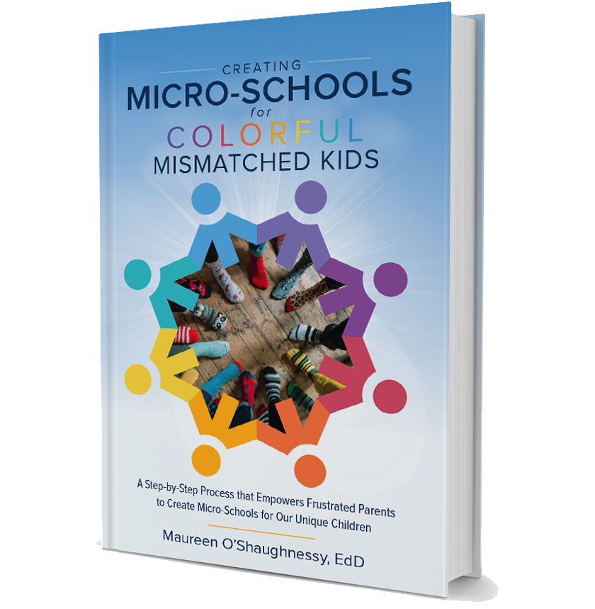 Creating Micro-Schools for Colorful Mismatached Kids